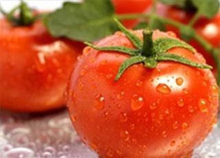 Cấm kỵ khi ăn cà chua ai cũng phải biết